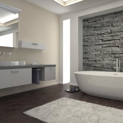 renovation_sdm_douche_moderne
